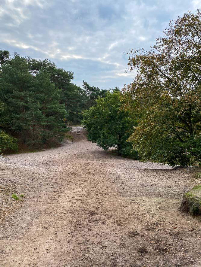 Mijn tips voor Zuid-Limburg, Tips voor Zuid-Limburg, wat te doen in Zuid-Limburg, bezoek de prachtige Brunsummerheide voor mooie wandelingen. Tips voor uitstapjes met kinderen, wandelroutes Zuid-Limburg,